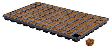 Eazy Plug 77 Tray